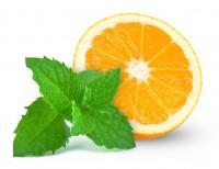 Fresh Orange - Smoker Anarchy® Liquid 10ml