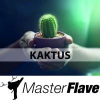 MasterFlave Aroma 10ml Kaktus