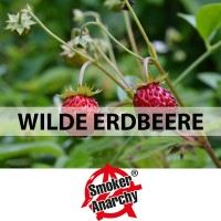 Wilde Erdbeere - Smoker Anarchy® Liquid 10ml