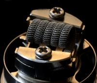 Coil Cat Pro Pharao RDA MothershipAlien Single (1 Stück) Handmade in Germany