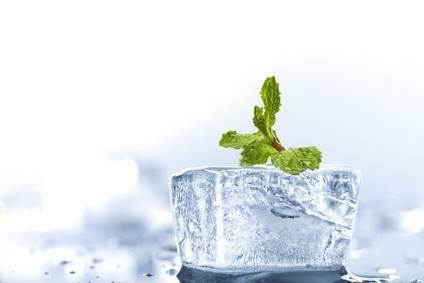 Herrlan E-Aroma 5ml Ice Bonbon
